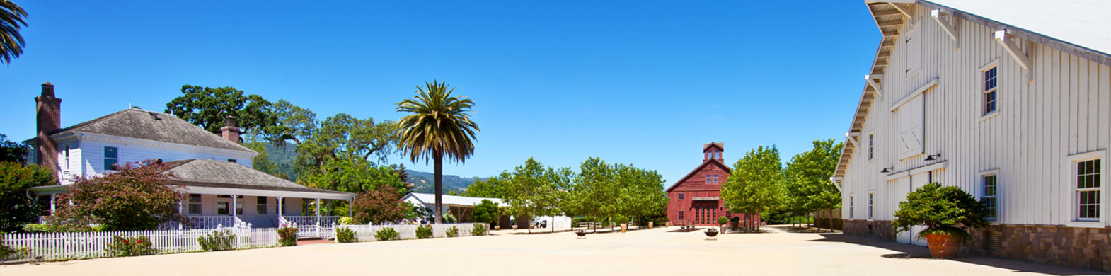 Napa Valley Wine Tours: Tours and Tastings